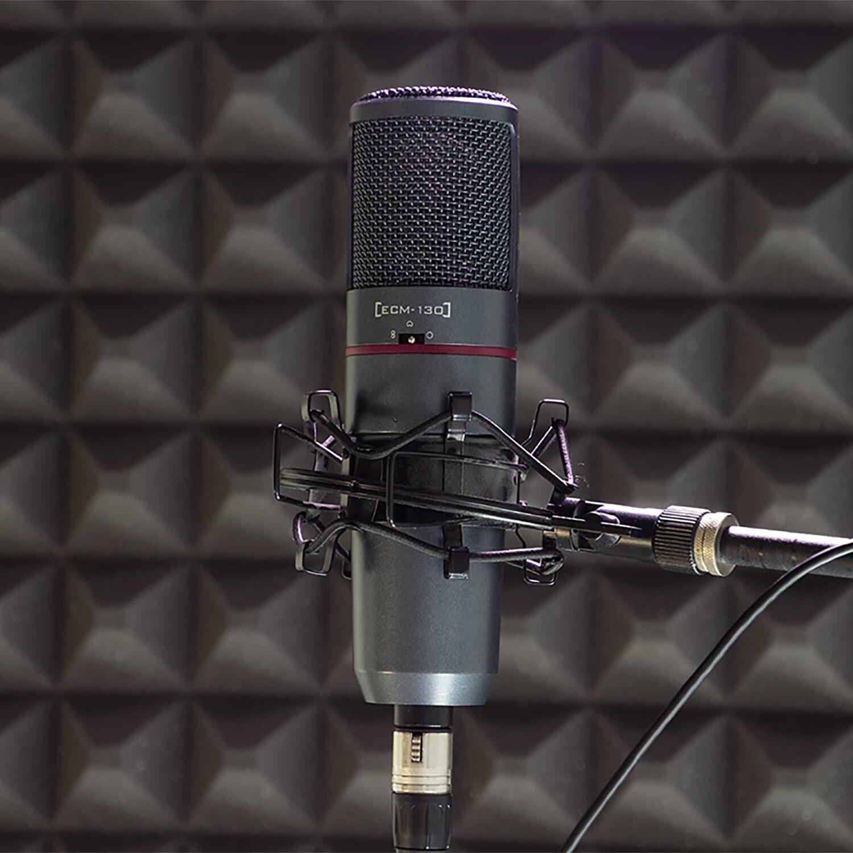 Nahaufnahmemikrofon